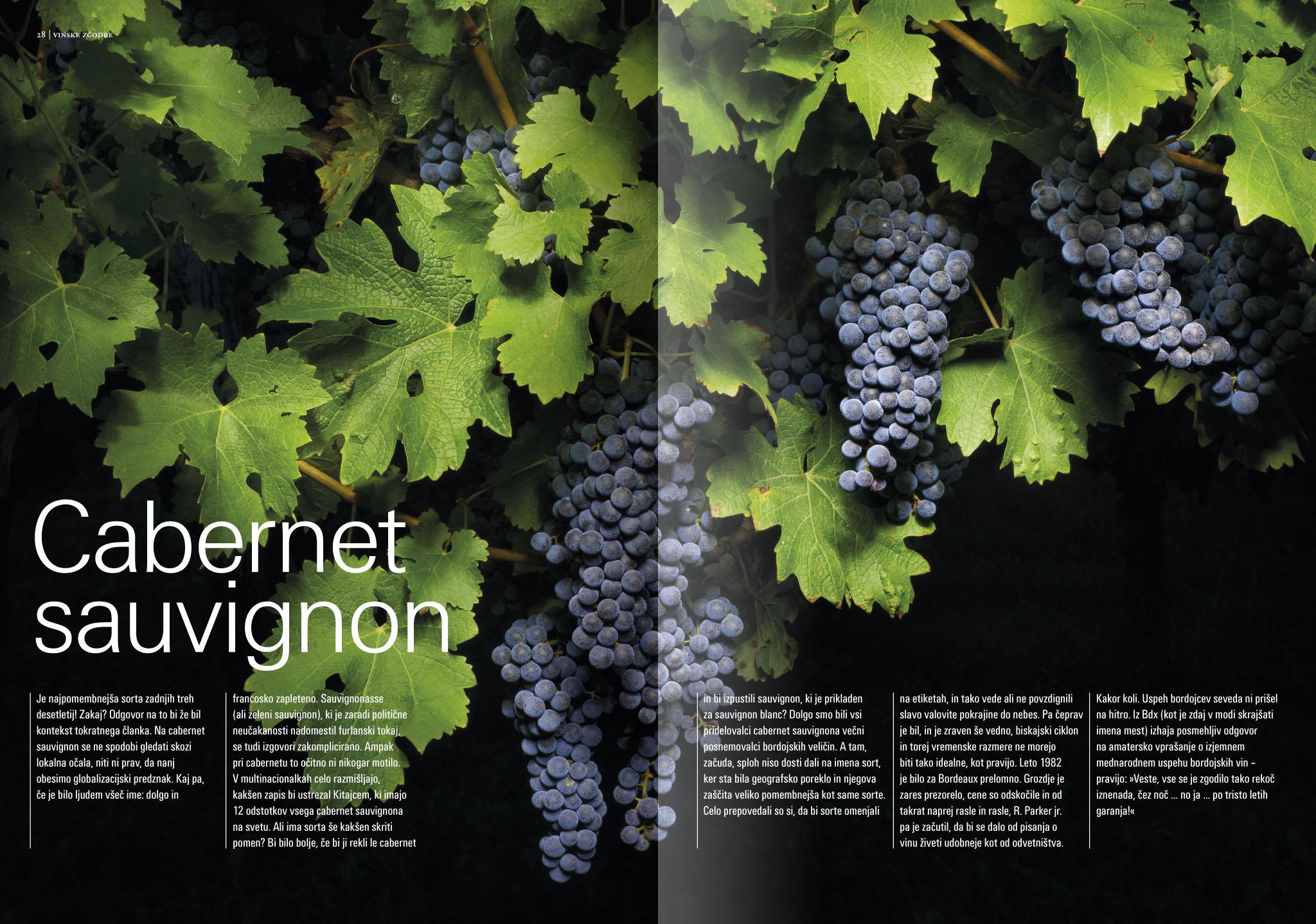 Revija Vino, pomlad 2015strani 28 in 29 - uvodne strani članka Cabernet sauvignon· Naročnik: Revija Vino · Fotografija za članek: Marijan Močivnik · 2014 ·