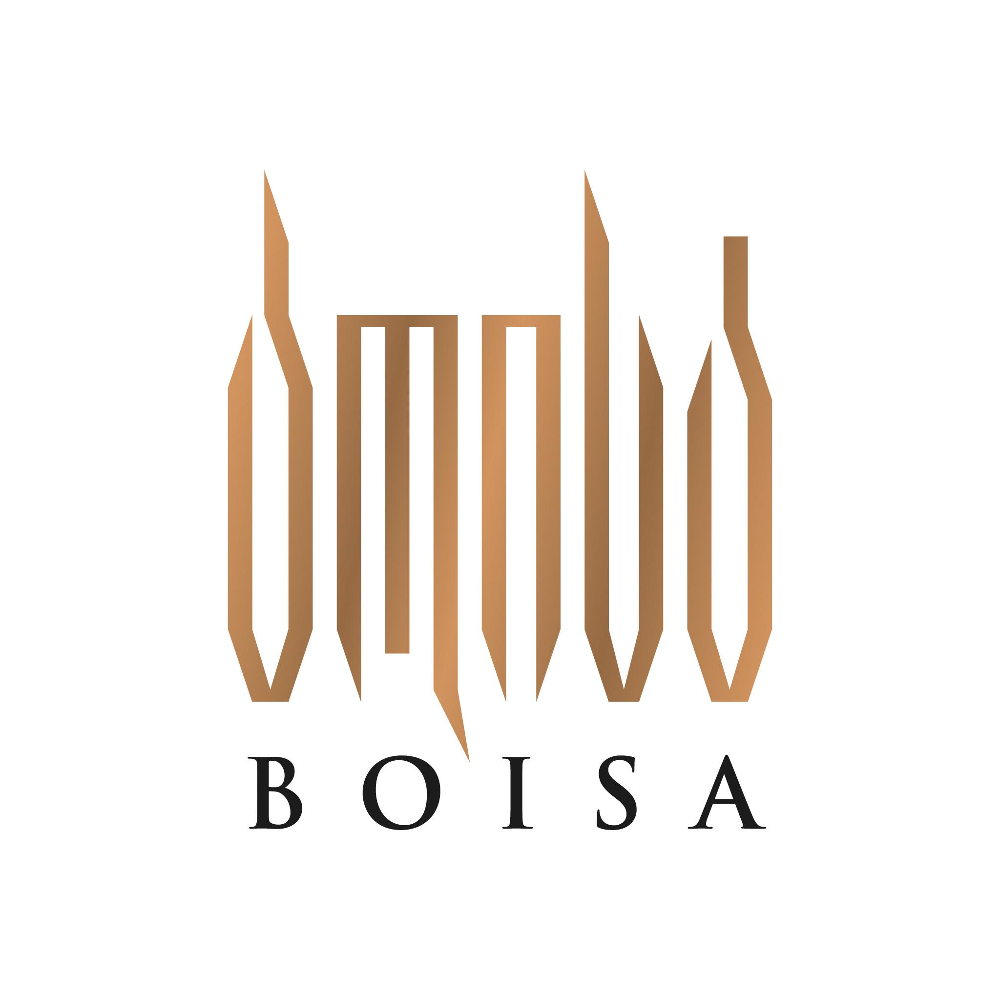 Boisa - logotip za vina in žgane pijače, Gruzija· Naročnik: Vladimer Boisa · Oblikovanje: Marijan Močivnik · 2015